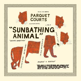 parquet Courts_Sunbathing Animal